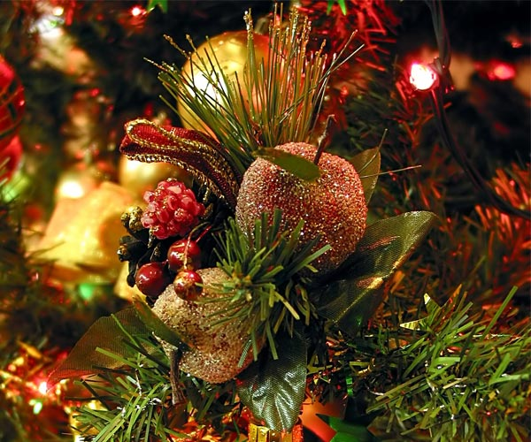 ornaments on a christmas tree