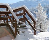 winter entry stairs