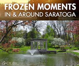 fountain in congress park in spring