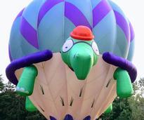 a turtle hot air balloon