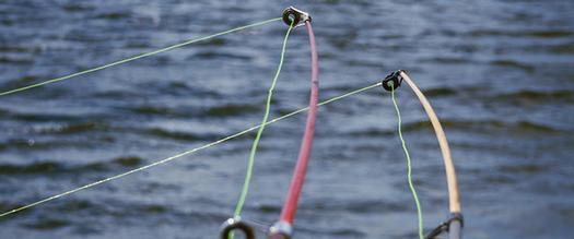 two fishing poles