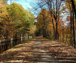fall bike trail