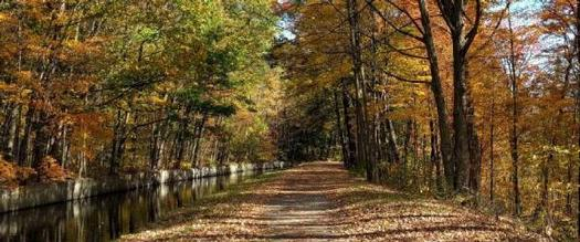 trail in fall by canal