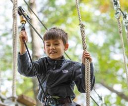 kid on treetop course