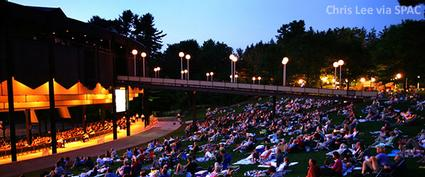 people watching a concert on the lawn at spac