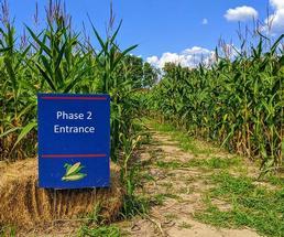 Corn maze sign Phase 2