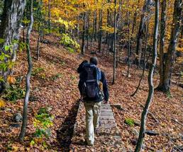 hiking on a trail in the fall