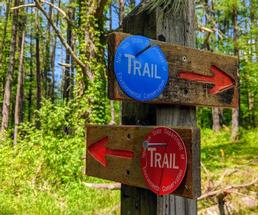 blue and red trail markers