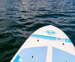 paddleboard in water