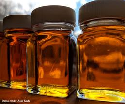 jars of maple syrup