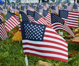 field of american flags honoring veterans