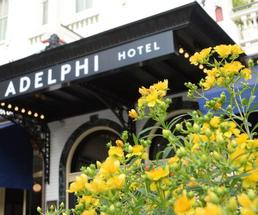 yellow flowers in foreground, Adelphi Hotel in background