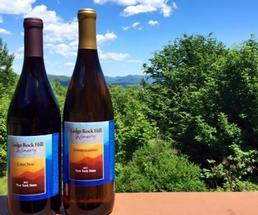 wine bottles outside