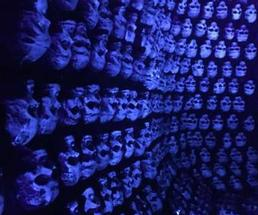 blue light on skulls
