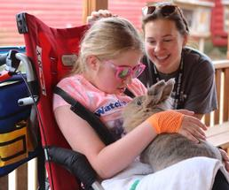 girl in wheelchair with bunny in lap