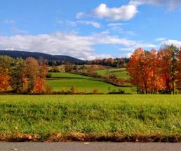 landscape photo of fall foliage and countryside