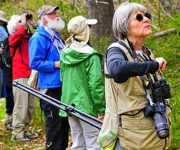 group of birders