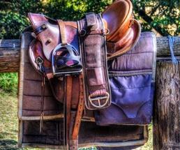 saddle on a fence
