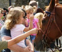 kids petting a horse