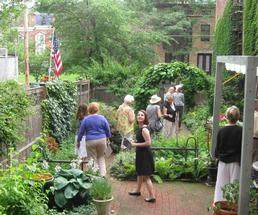 people exploring a garden