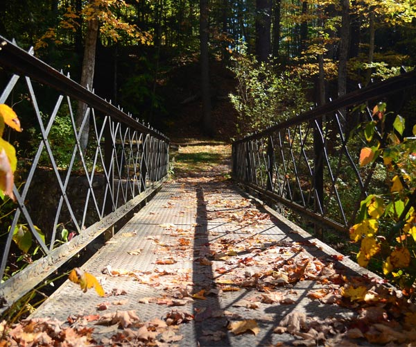 bridge with fall foliage