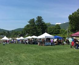 people attending a festival with vendors at charles r wood park