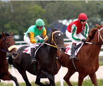 Thoroughbred horse racing in Saratoga
