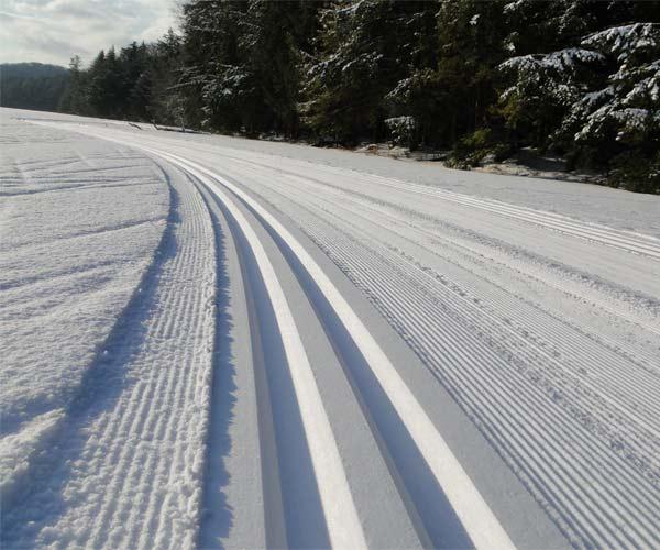 cross-country ski tracks