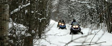a row of snowmobilers
