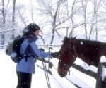 Woman with horse in the winter