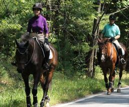 people horseback riding