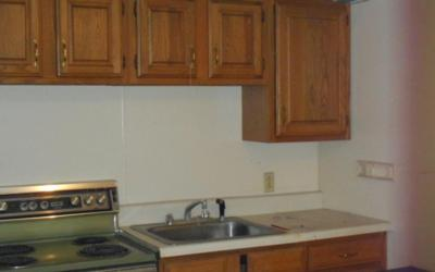 sink and oven near cabinets