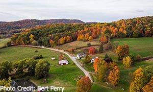 fall foliage aerial view