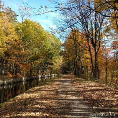 fall foliage on path by canal