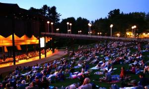 crowd on lawn at SPAC at night