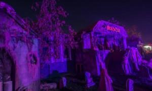 purple lighting over haunted graveyard
