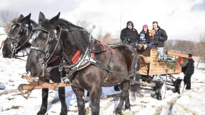 horse wagon ride in winter