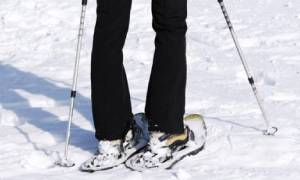 person wearing snowshoes