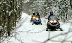 three snowmobilers