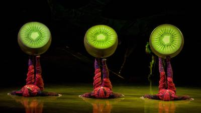 performers dressed as insects balancing kiwis