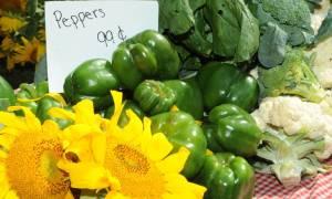 peppers, cauliflower, sunflowers