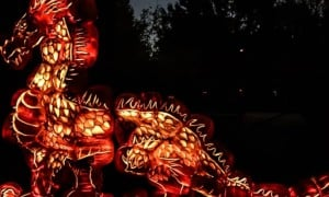 an orange illuminated dragon display