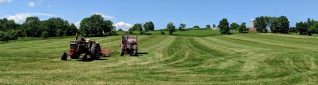 field with tractors on a sunny day