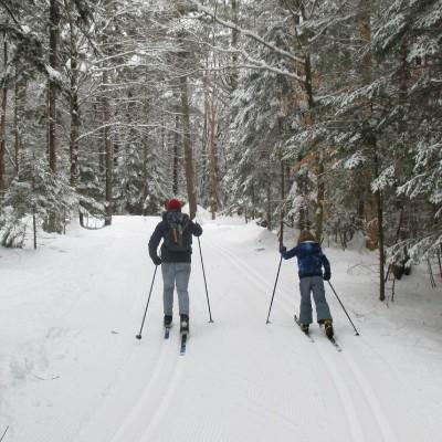 adult and kid cross country skiing
