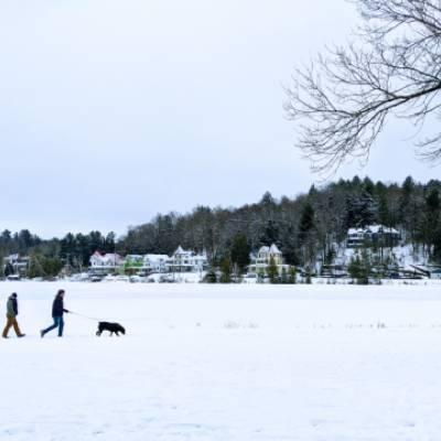 people walking dogs in winter