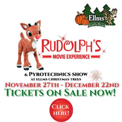 rudolph movie experience details