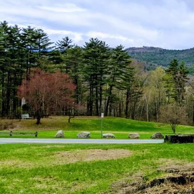 walking path in park