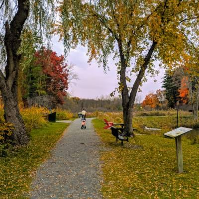 a park in the fall