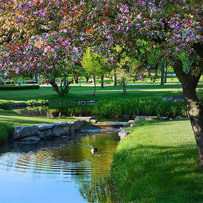 congress park in spring