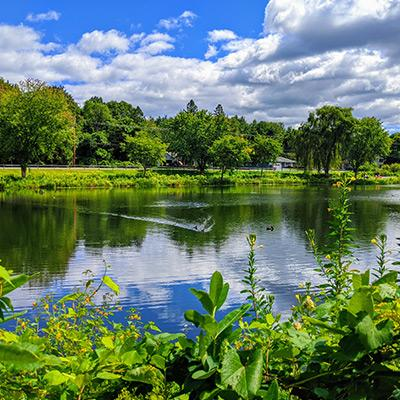 hovey pond on a sunny day